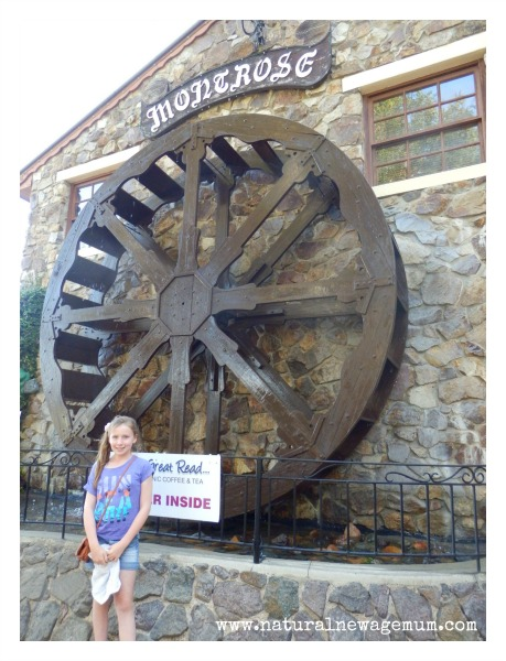 The Water Wheel at Montville