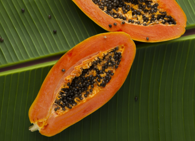 Is your pawpaw ointment toxic?