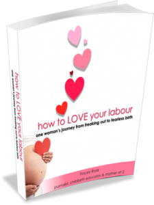 HowToLOVEYourLabour-bookimage