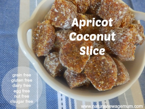 Apricot Coconut Slice – the real food way!