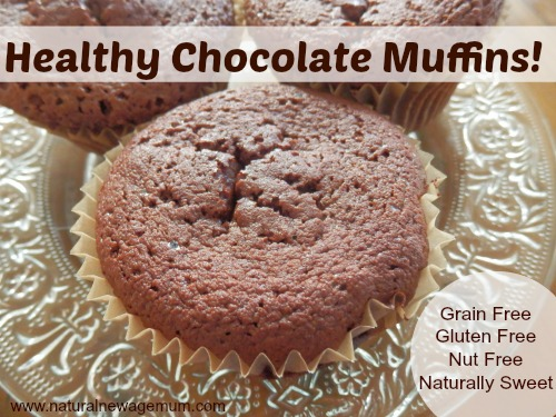 Healthy Chocolate Muffins GF/DF/NF