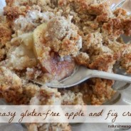 My easy gluten-free apple and fig crumble