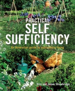 practical-self-sufficiency
