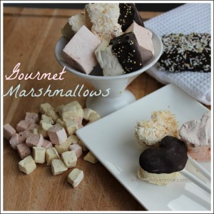 Gourmet-Marshmallows2_border-1024x1024