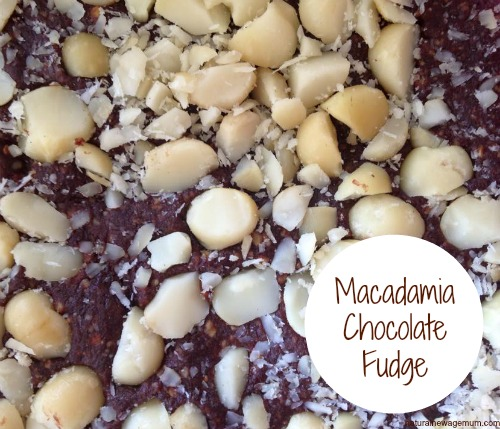 Macadamia Chocolate Fudge