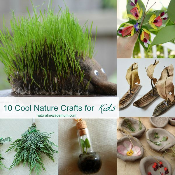 10 Cool Nature Crafts for Kids
