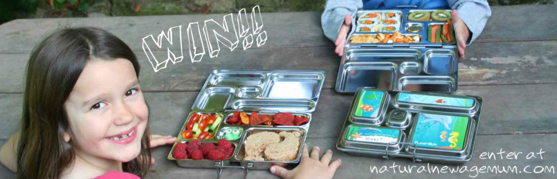 Biome PlanetBox Lunchbox Giveaway